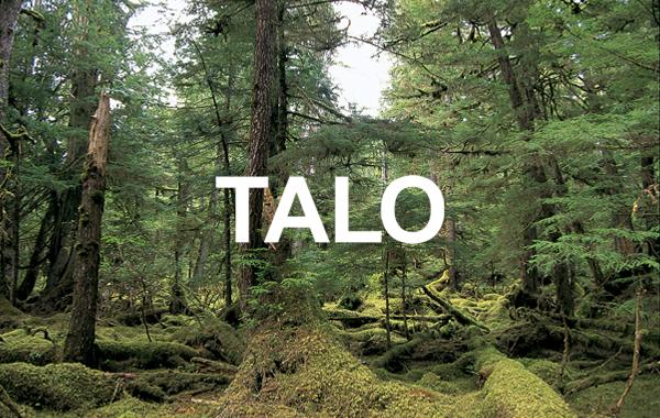 TALOインターナショナル