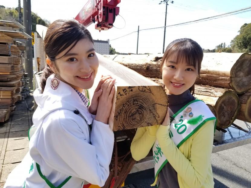 [5]女子が木を伐る所から家をつくる。<3.製材>